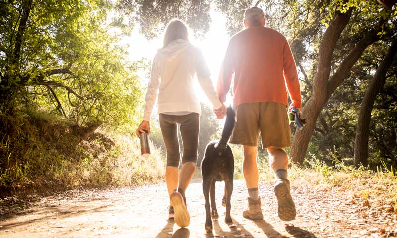 How Exercise Promotes Healthy Veins, older couple walking a dog in woods